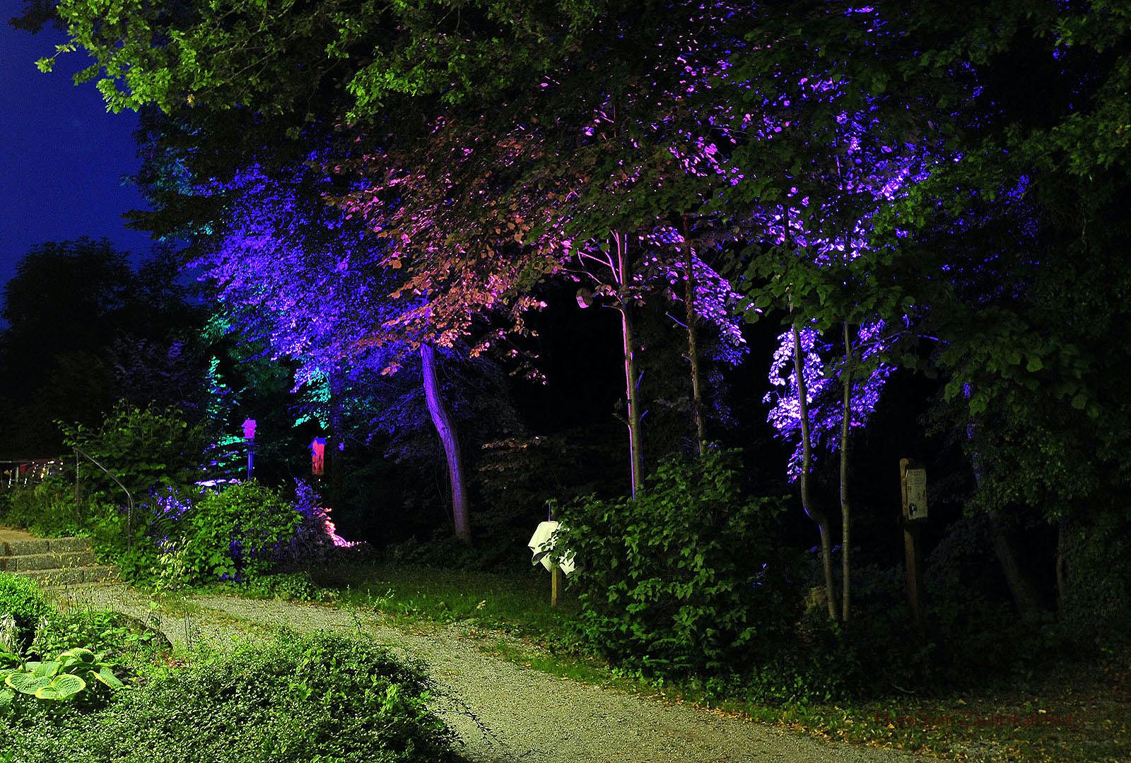 Nachts im Garten des Hotel zum Zauberkabinett